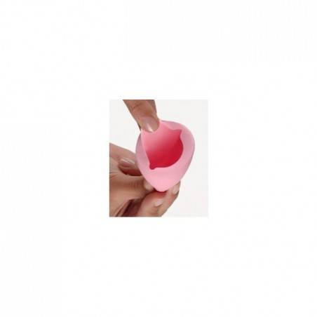 Coupe Menstruelle Lily Cup - Intimina